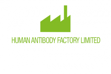 Human Antibody Factory Limited