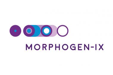 Morphogen-ix